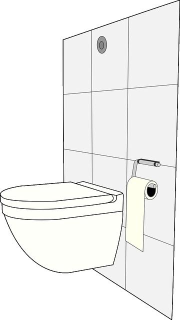 Wybieramy idealną miskę WC!